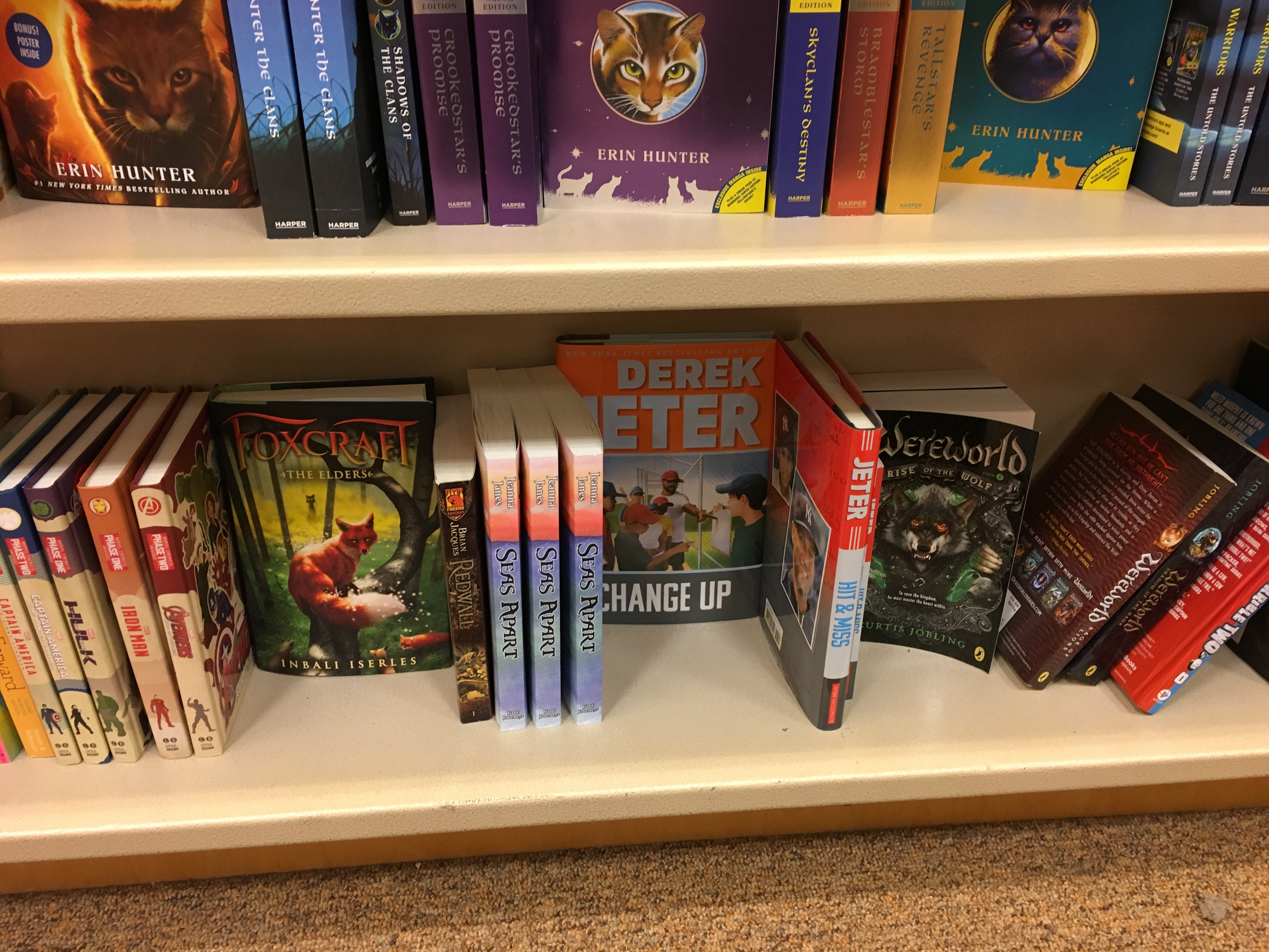 the shelf at Barnes Noble Jeanna Janes